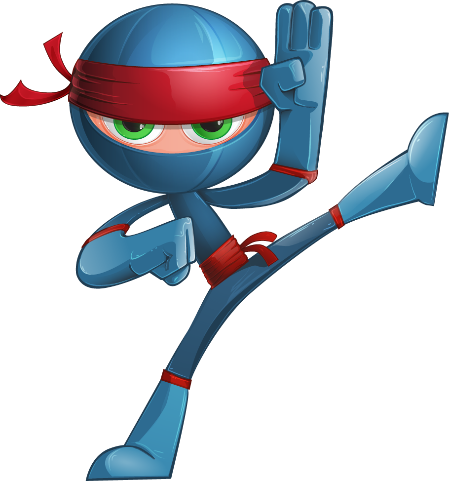Your Video Ninja